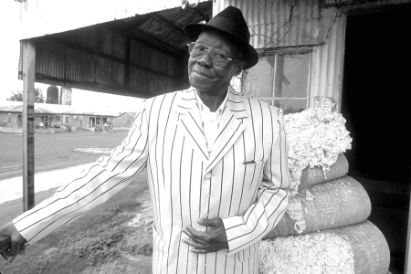 Pinetop Perkins, blues musician